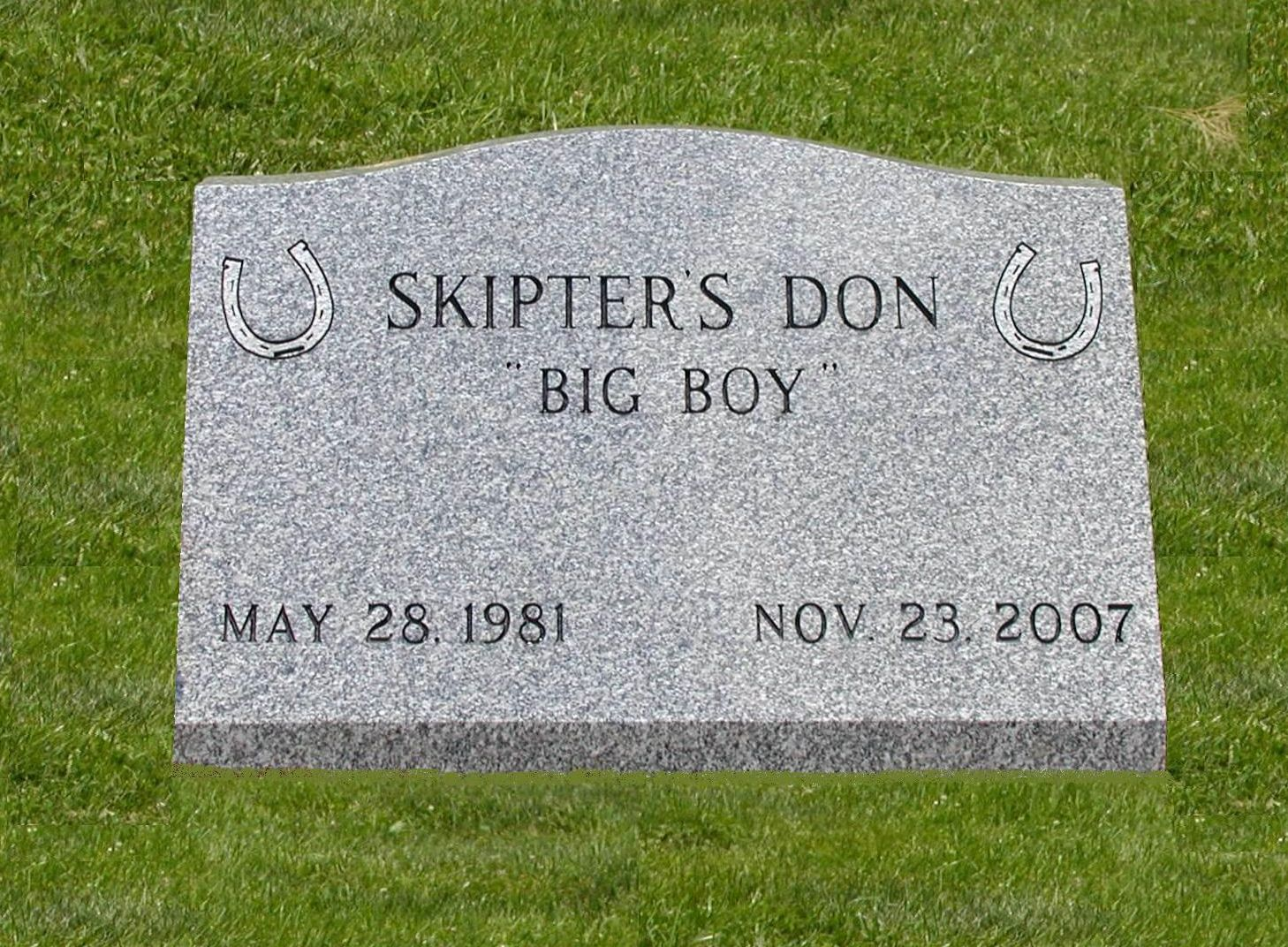 Skipters-Don